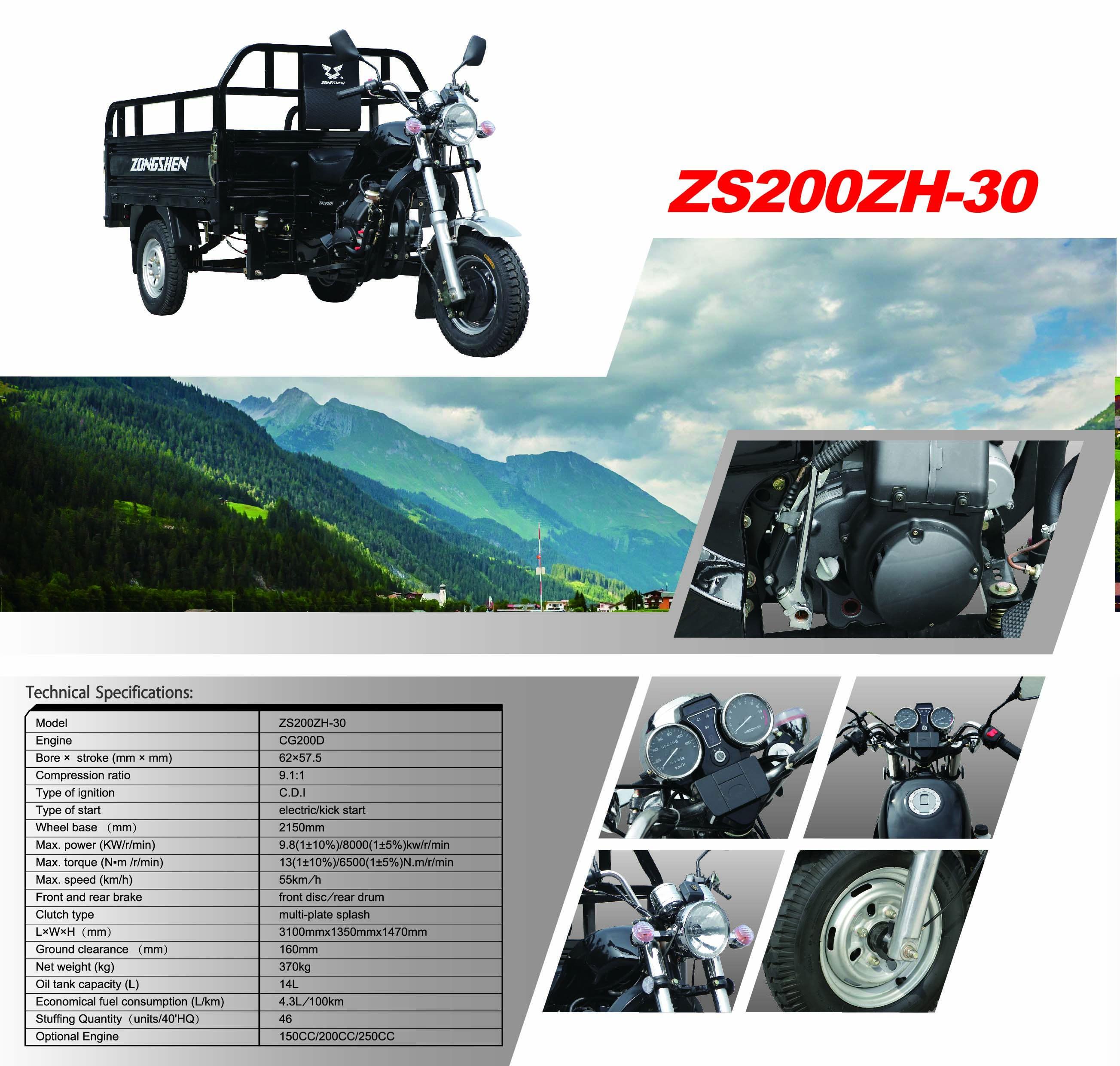 ZS200ZH-30 (1).jpg